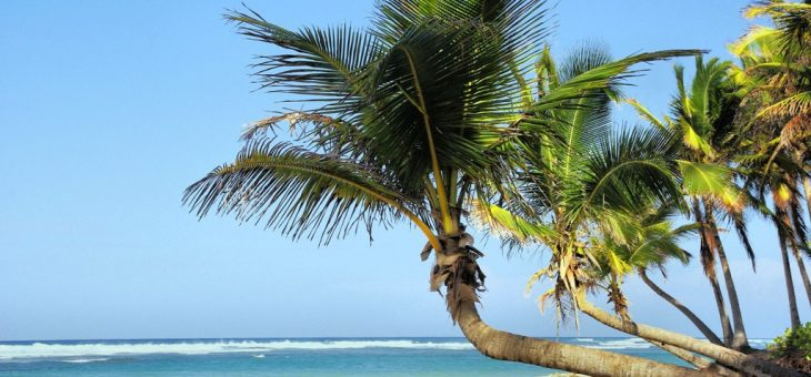 Visiter de magnifiques villes côtières le temps d'un circuit au Cuba