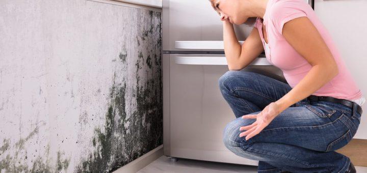 Comment détecter une infiltration d'eau dans un mur ?