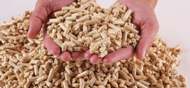 4 paramètres à tenir compte pour bien choisir les granulés de bois à Alès
